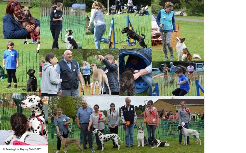 Lions Dog Show at Seavington